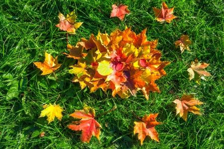 Jak wzmocnić odporność przed jesienią (wit. C, D, kwasy Omega)?