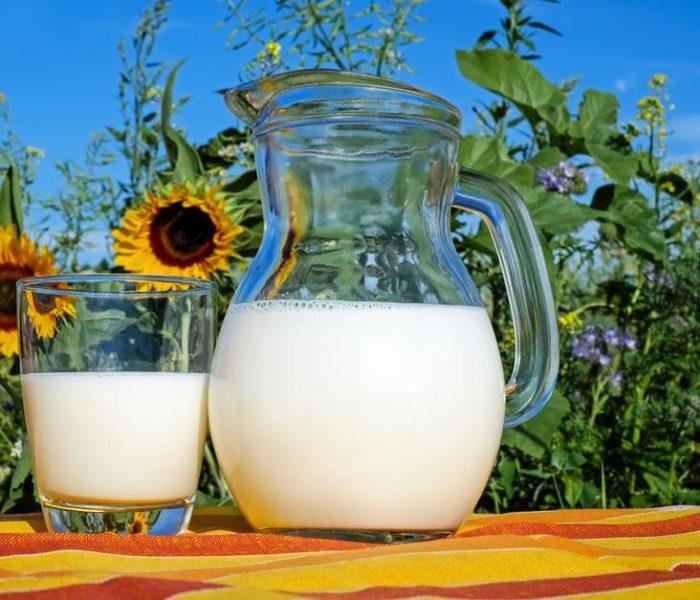 Nietolerancja laktozy i alergia na białko mleka krowiego